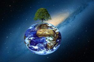 world tree universe